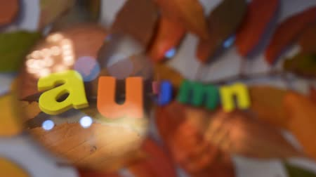 soon : Word autumn of colorful letters through magnifying glass on yellow leaves background.