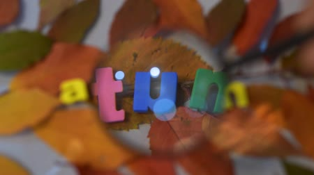 cabeçalho : Word autumn of colorful letters through magnifying glass on yellow leaves background.