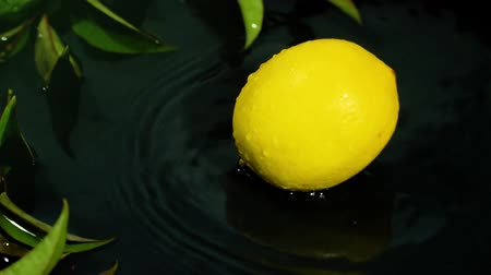 dieter : Lemon drops on water surface with splash on black background close-up slow motion Stock Footage