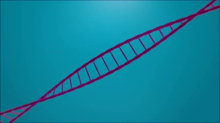 nucleic : Slow speed rotating DNA strand on a background Stock Footage