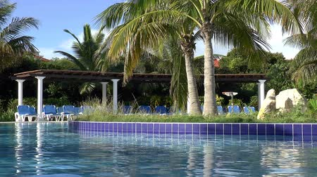 Тропический климат : Resort swimming pool and palm trees in the Caribbean. Стоковые видеозаписи