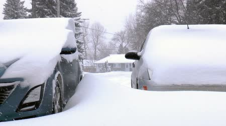 okładka : Two cars covered by snow, under severe winter storm.