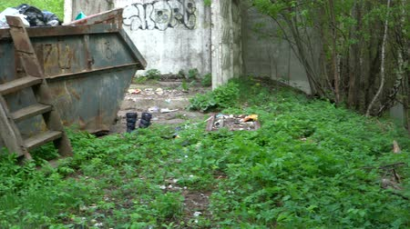 litter box : Container with garbage, next to which the waste is scattered. Stock Footage