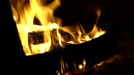 Burning logs are in the fireplace or oven