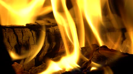 Close-up of firewood covered by a hot flame