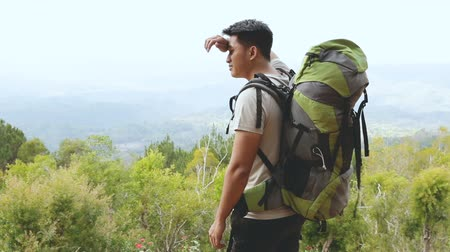 backpacker : Zaino asiatico felice in natura Filmati Stock