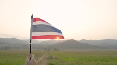 thailand flag hold by hand