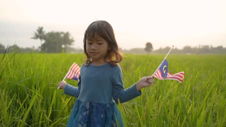 malaysian kid with national flag Wideo