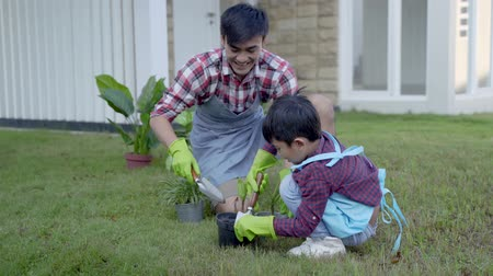 pikk : happy asian daddy and son gardening at his house garden