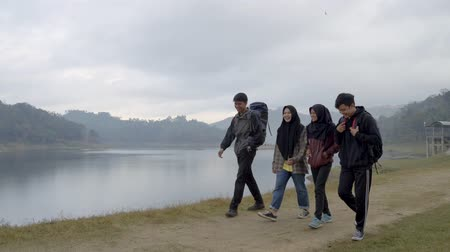 expedição : Group of friends with hold hands enjoy lake view Vídeos