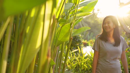 organismo : image of young woman pregnant standing side the plants
