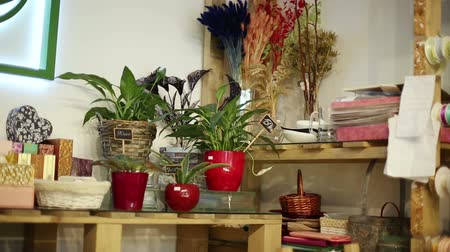 přadeno : Flowers and accessories in a flower shop. Dostupné videozáznamy