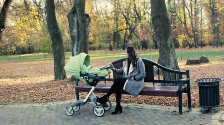 толчок : Beautiful young mother walking with a baby carriage in the park.