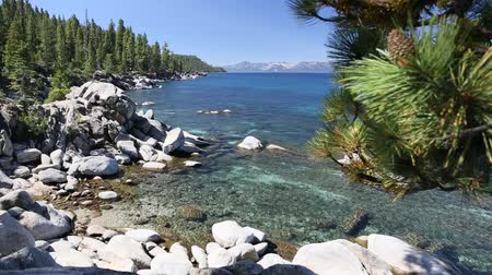 göl : Beautiful Clear Water Shoreline of Lake Tahoe with Natural Audio in the Background. - Water, Birds, etc. Stok Video
