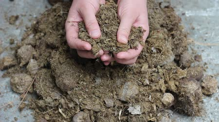 podridão : Animal manure compost. The hands of a man. Manure is a valuable fertilizer for any farming operation