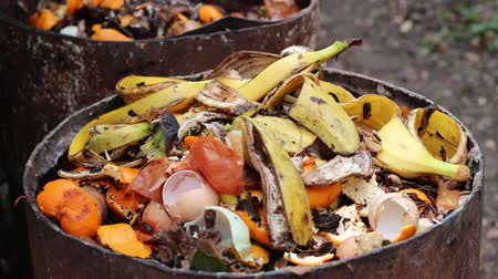atık : Food scraps compost heap. Heap of wet organic matter known as green waste (leaves, food waste) and waiting for the materials to break down into humus