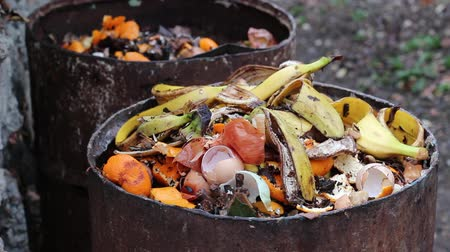 rothadó : Kitchen Scraps. Home compost barrel. Sorting out composting