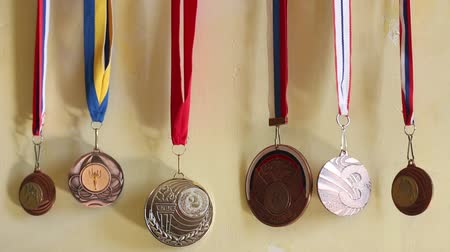 victor : Medals Collection Of Judo. Collection of sports awards Stock Footage