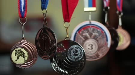 premium : Medals Collection Of Judo. Collection of sports awards Stock Footage