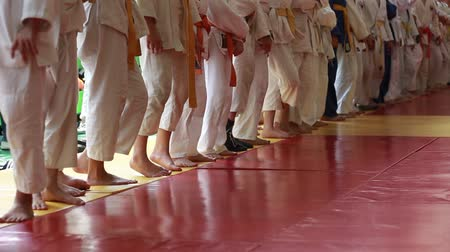 каратэ : Judo Competition. The Awards Ceremony. Children Martial arts. School of judo