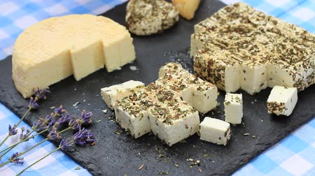 tasting : Homemade Goat Cheese. Farmers Fresh Food Market. Street fair. Uses of lavender: culinary ingredients