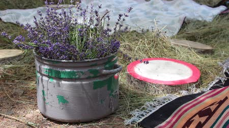 hayloft : A romantic rendezvous in the hayloft. Fragrant bouquet of lavender in an old pot. Country Still Life