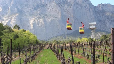 chairlift : Cable Car Over Vineyard. Aerial tramway Stock Footage