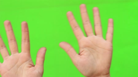 nonverbal : Hands up closeup. Dancing movements. Wave. Hand Gesture. Isolated. Green Screen Chromakey