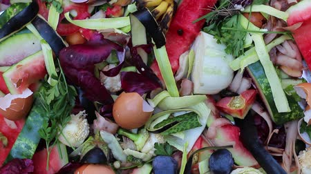 atık : Vegetable kitchen scraps such as peels, skins, stalks. Organic waste for vermicomposting close up Stok Video