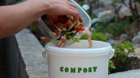 humanóide : Compost bucket for fruit and veg peelings. Food waste in recycling bin at home