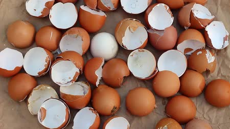 egg sorting : Egg shells be a benefit to the garden soil. Eggshells for compost