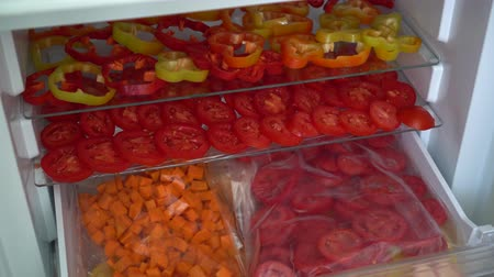 biber : Freezing fresh vegetables at home. Food, storage, dieting and people concept Stok Video