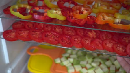 konzervace : Freezing fresh vegetables at home. Food, storage, dieting and people concept Dostupné videozáznamy