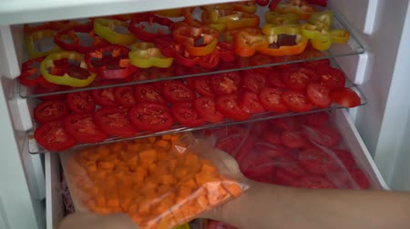 blanching : Freezing fresh vegetables at home. Food, storage, dieting and people concept Stock Footage