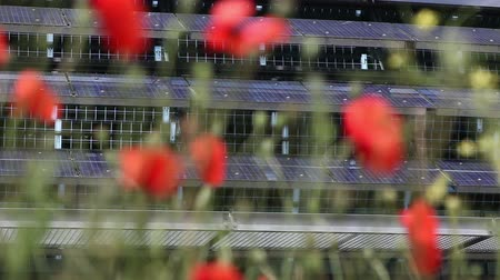 fotovoltaica : solarcells in background of poppies