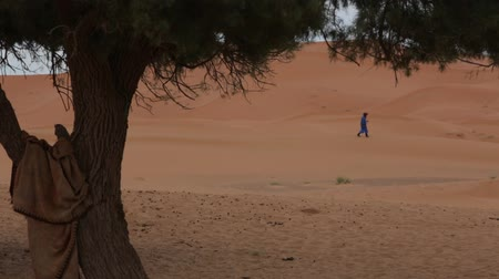 relics : The Waiting Man in the Desert. Moroccan Man. The Waiting Man in the Desert. Stock Footage