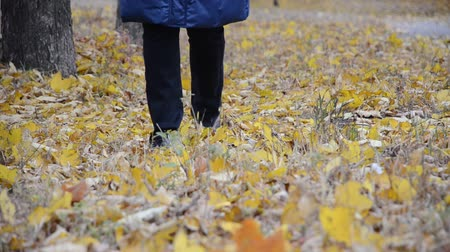 bota : A woman walks on autumn leaves Visible only legs Stock Footage