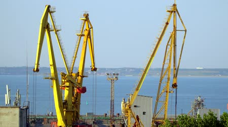 distribution lectrique : Cranes in seaport. You can see the harbor and the city on the horizon Stock Footage