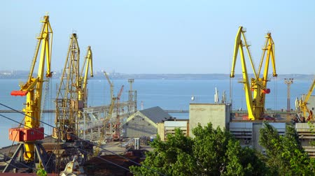 distribution lectrique : Buildings and cranes in the seaport. On the horizon is visible city Stock Footage