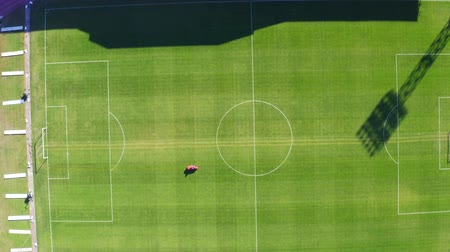 арена : Care, preparation, maintenance of a football field. Aerial drone footage Стоковые видеозаписи