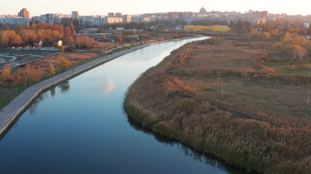 水路 : River in the city overgrown with reeds. Birds eye view. Autumn 動画素材
