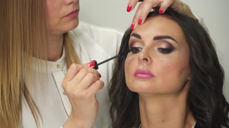 закрывать : Makeup artist applies to a young woman with a brush. Стоковые видеозаписи