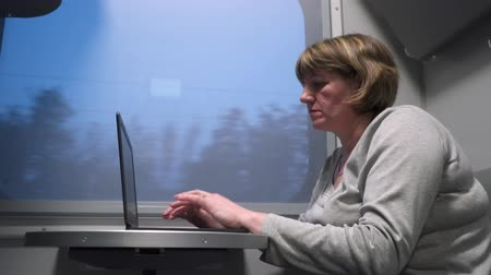 train workers : Woman on the train working with a laptop.