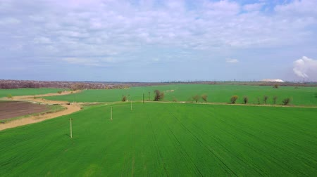 agricultural lands : Spring farm field. Aerial view. Stock Footage