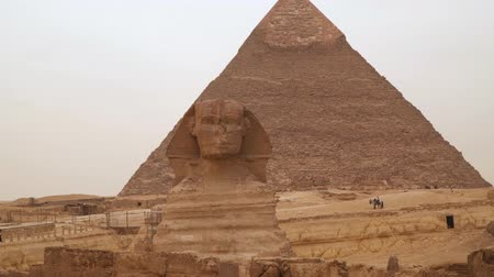 плато : Great Sphinx on the background of the pyramid of Khafre. Cairo egypt Стоковые видеозаписи