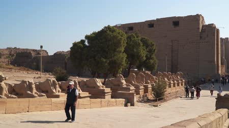 esfinge : Luxor, Egypt - January 16, 2020: The Karnak Temple Complex, commonly known as Karnak, comprises a vast mix of decayed temples, chapels, pylons, and other buildings near Luxor, in Egypt