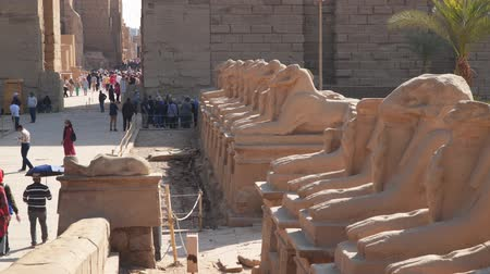 hieroglifa : Luxor, Egypt - January 16, 2020: Egyptian Art. Karnak Temple. Avenue of sphinxes with rams head. Around luxor egypt Stock mozgókép