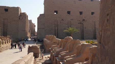 기둥 : Luxor, Egypt - January 16, 2020: Karnak Temple. Avenue of sphinxes with rams head. Egyptian Art.