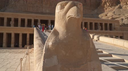 hieroglifa : Luxor, Egypt - January 16, 2020: Horus statue at Temple of Hatshepsut in Egypt