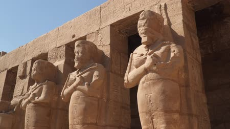 hieroglifa : Egypt art. Statues at the Karnak Temple in Luxor. Stock mozgókép